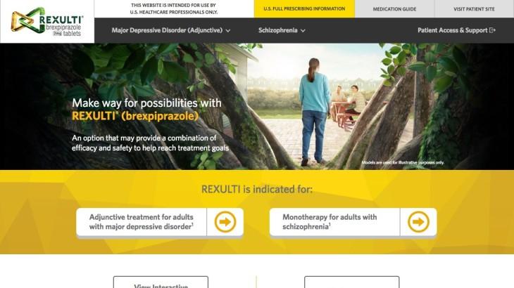 HCP Website Screenshot - Homepage